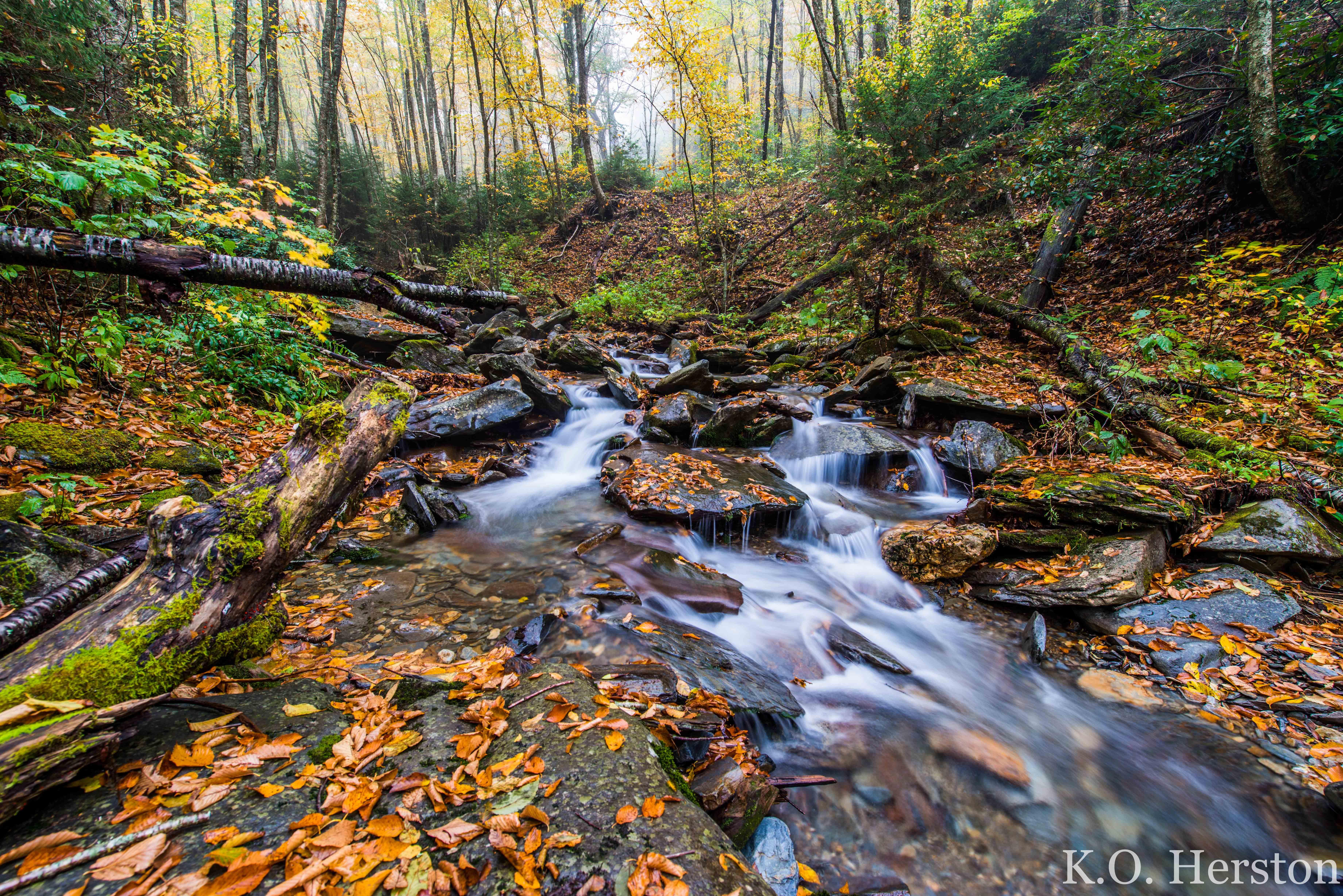Of The Week Alum Cave Creek